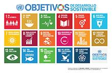 Desarrollo-sostenible-219-144px